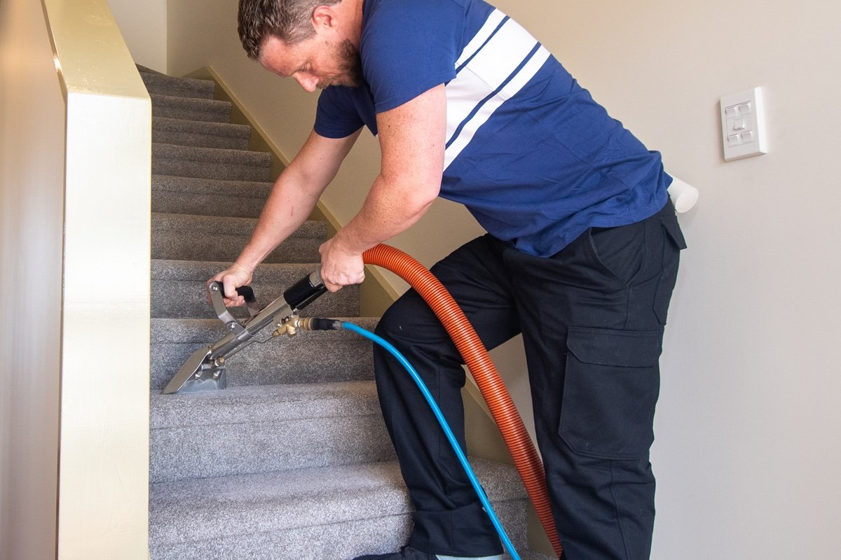 Professional carpet cleaner removing stains on stairs.
