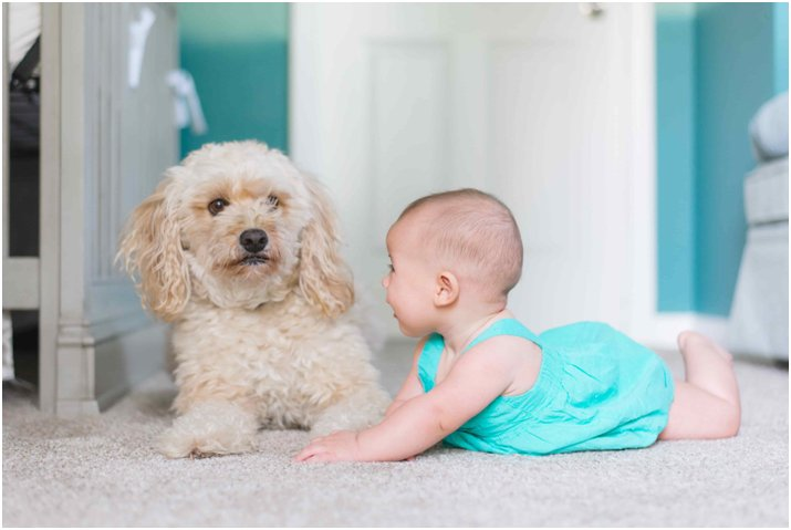 Baby and small dog sitting together on white carpet