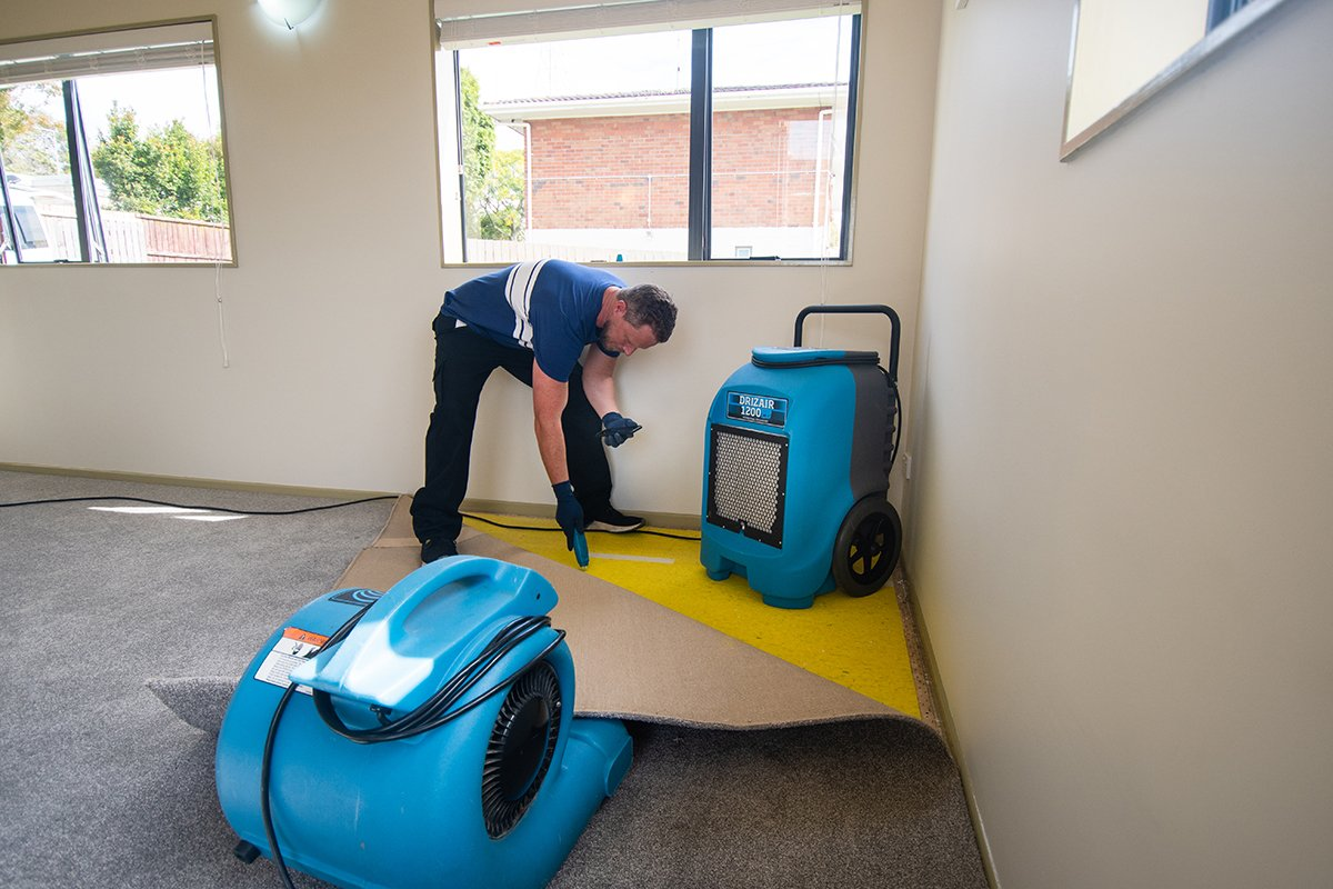 drying carpet after a flood and test moisture