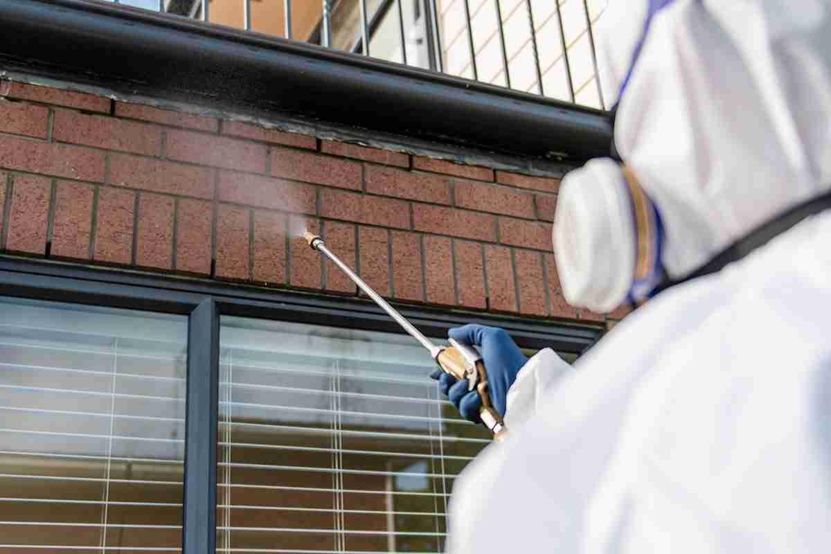 Ecosan professional spider pest control